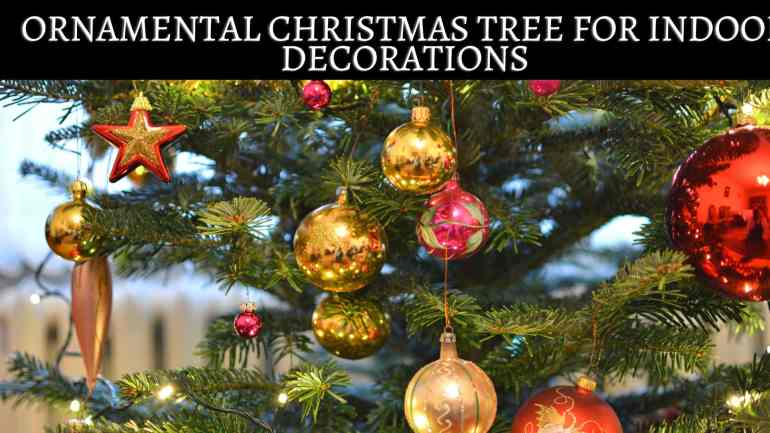 Christmas Decoration Ideas 2020