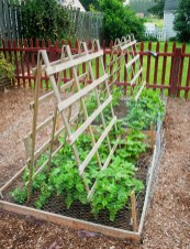 32 Successful Ways To Building DIY Trellis For Veggies And Fruits HomeDesignInspired 19