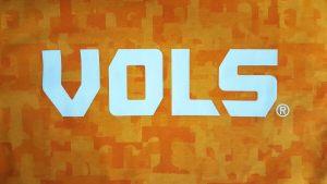 FanouFlage Vols Logo