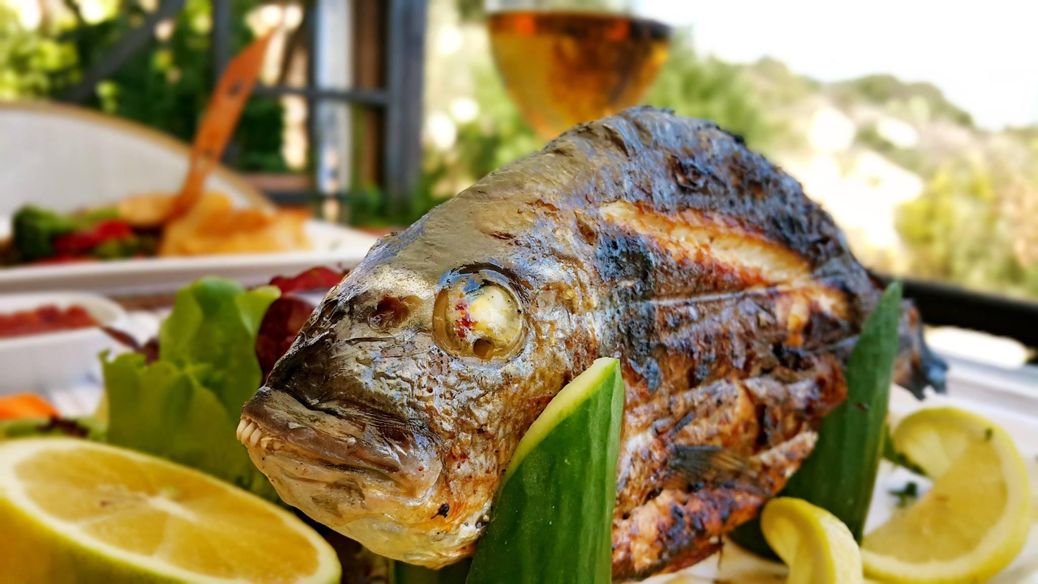 Alanya Muhtarı Yeri 0 242 513 51 88 balık restoranı şık lokantalar kahvaltı mekanları tavsiye edilen en iyi yerler Alanya'da gidilecek yerler