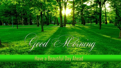 Good Morning Images Download