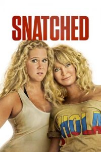 Download Snatched  Full Movie Hindi 720p