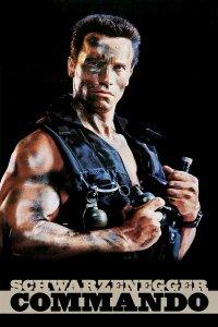 Download Commando Full Movie Hindi 720p
