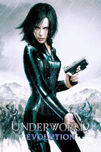 Download Underworld Evolution Full Movie Hindi 720p