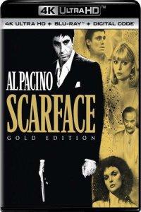 Download Scarface Full Movie Hindi 720p