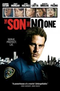 Download The Son of No One Full Movie Hindi 720p