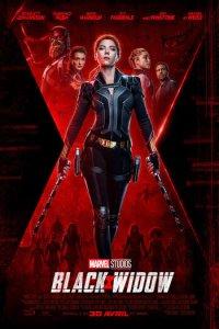 Download Black Widow Full Movie Hindi 720p