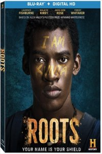 Dowload Roots Part 1 Full Movie Download Hindi