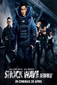 Shock Wave (2017) Full Movie Download Dual Audio in Hindi BluRay 720p 1.2GB ESubs