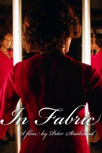 Download In Fabric Full Movie Hindi 480p