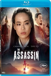 Download The Assassin Full Movie Hindi 720p