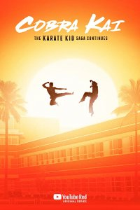 Download Cobra Kai Season 2 Hindi 720p