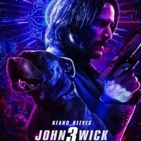 John Wick: Chapter 3: Parabellum 2019 (Hindi Dubbed) BluRay 1080p 720p 480p Full Movie