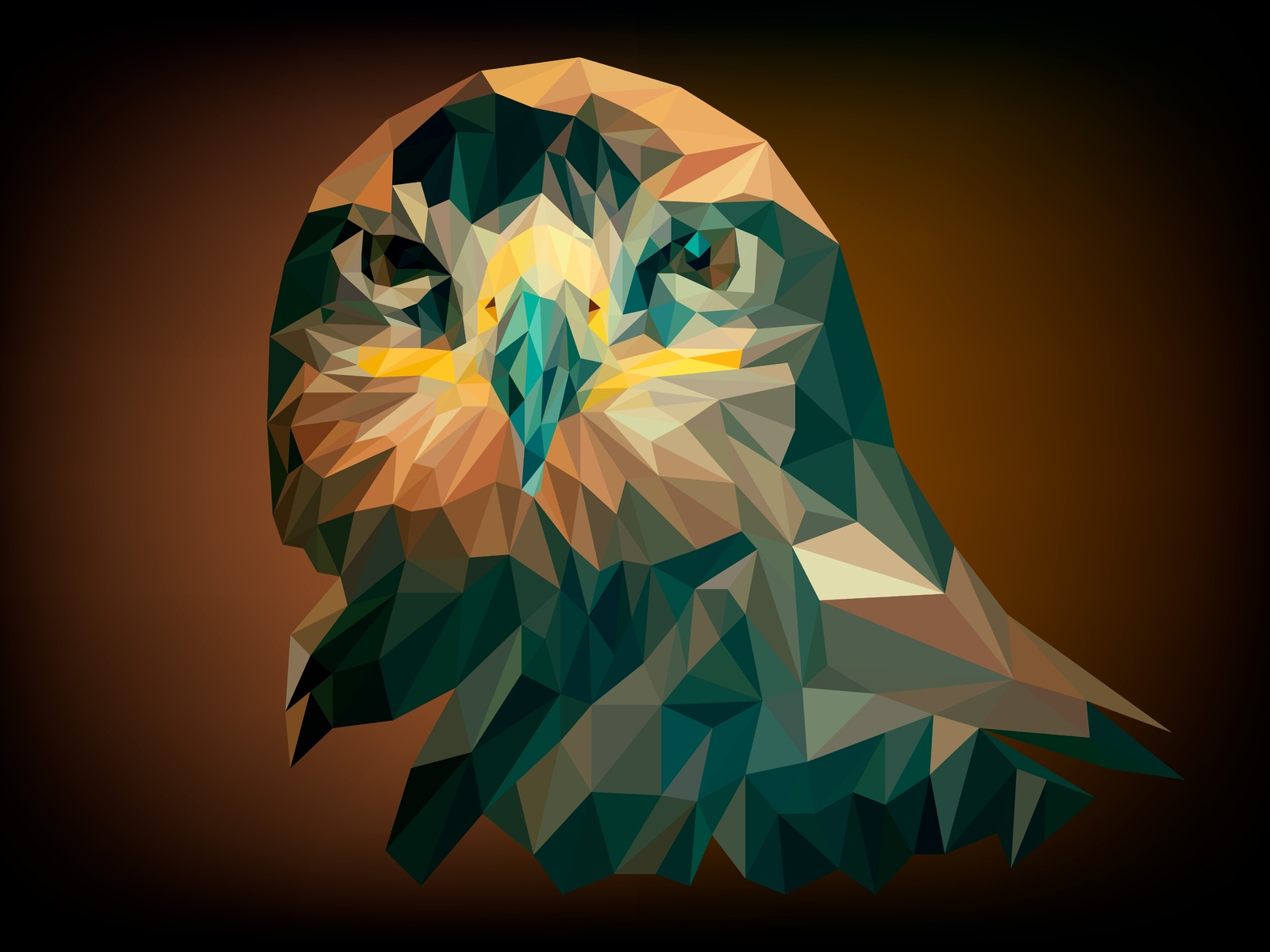 1600x1200 artistic abstract owl