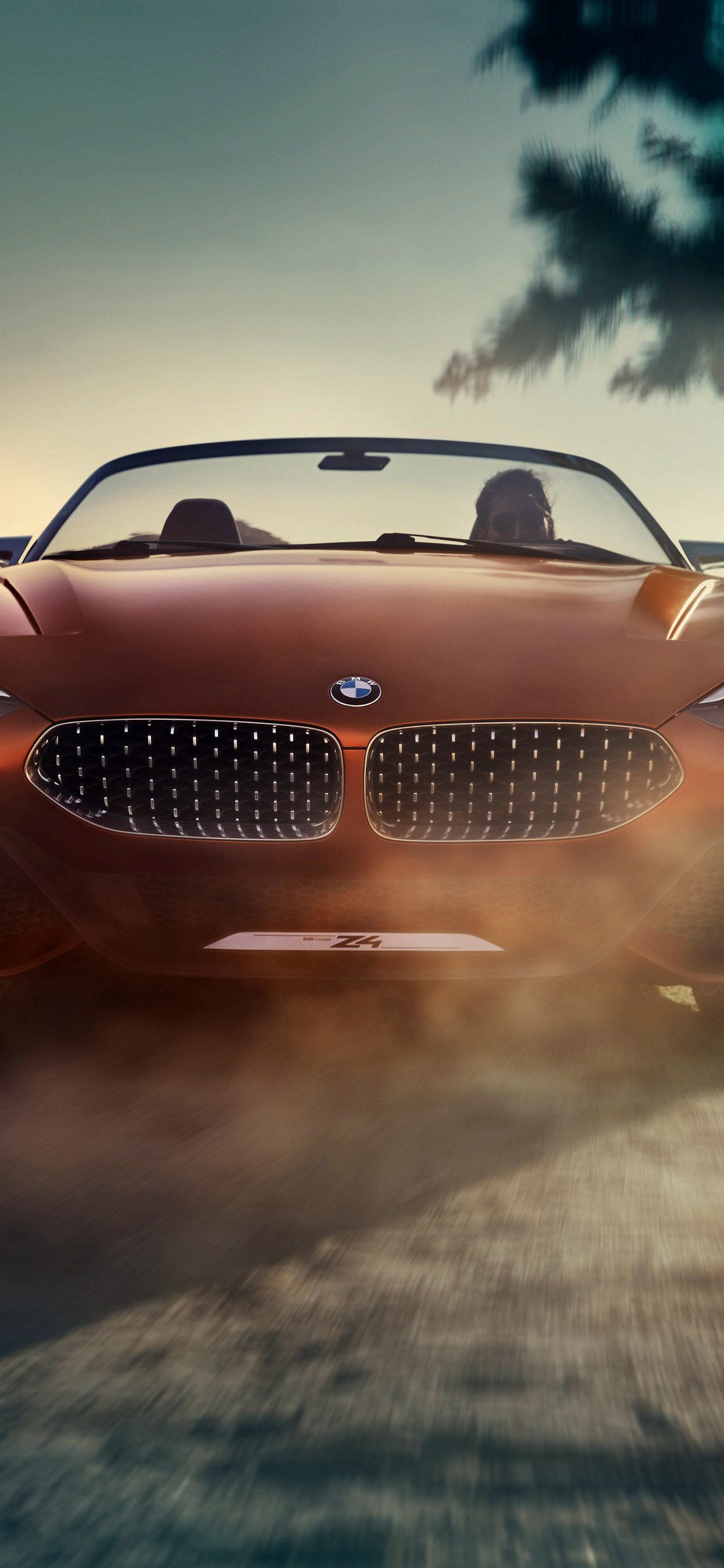 1242x2688 Bmw Concept Z4 4k Front Iphone Xs Max Hd 4k Wallpapers