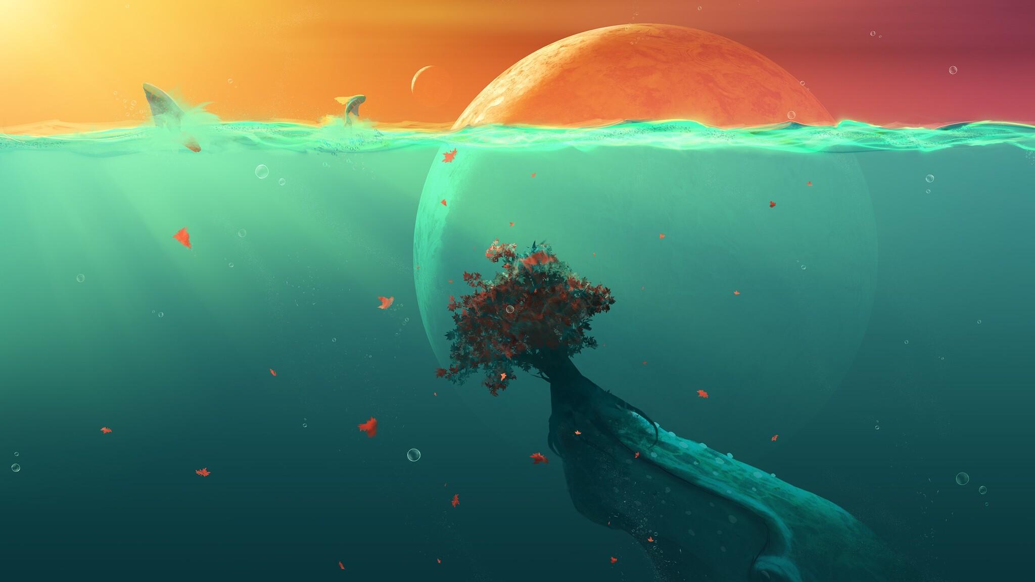 Cute Wallpapers For Girls  2048x1152 Deep Ocean Planet Fish 2048x1152 Resolution Hd