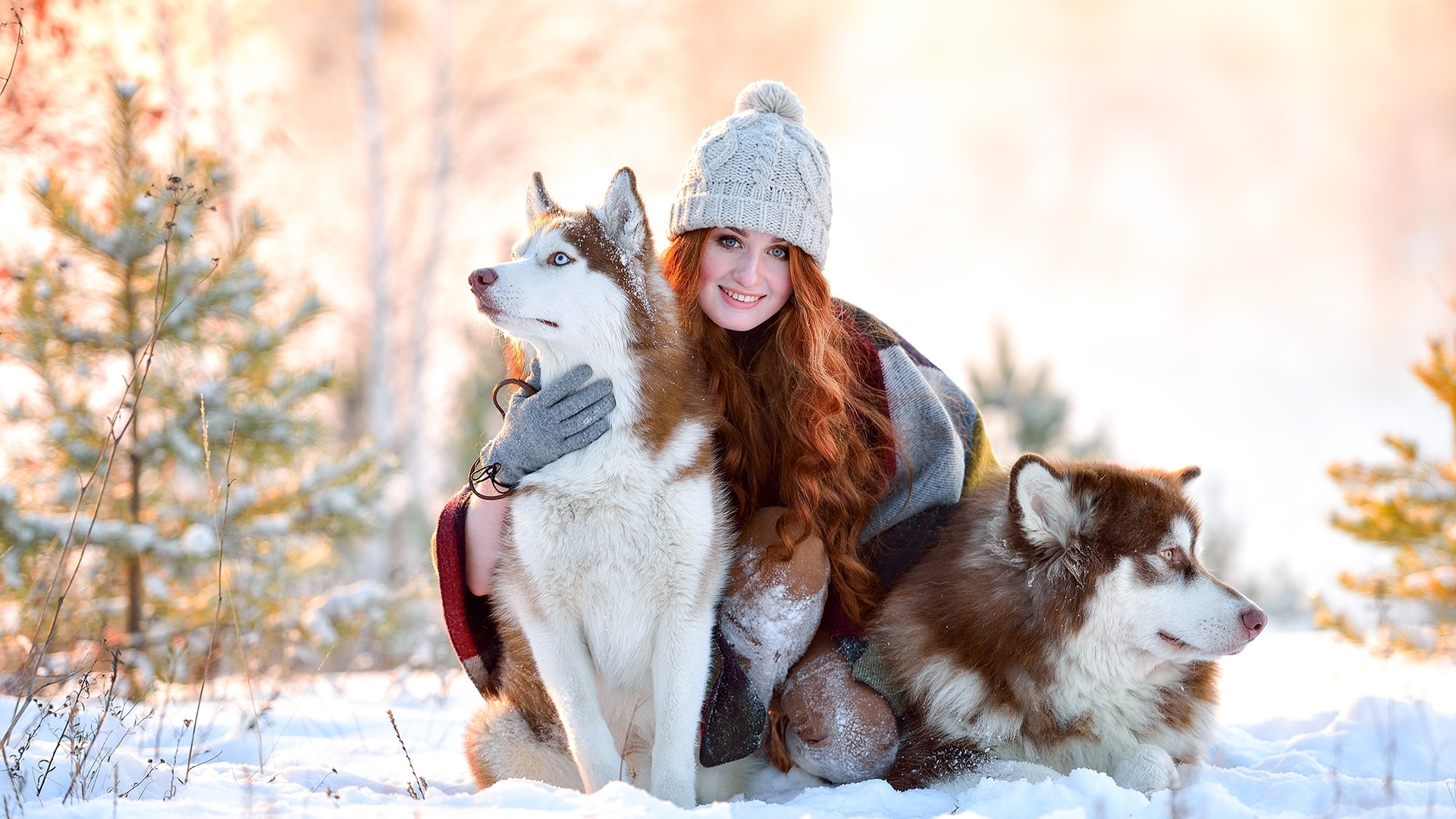 Indian Cute Girl Wallpaper Download 1920x1080 Girl In Snow With Siberian Husky Laptop Full Hd