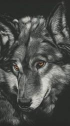 Watercolor Wolf Wallpaper Iphone