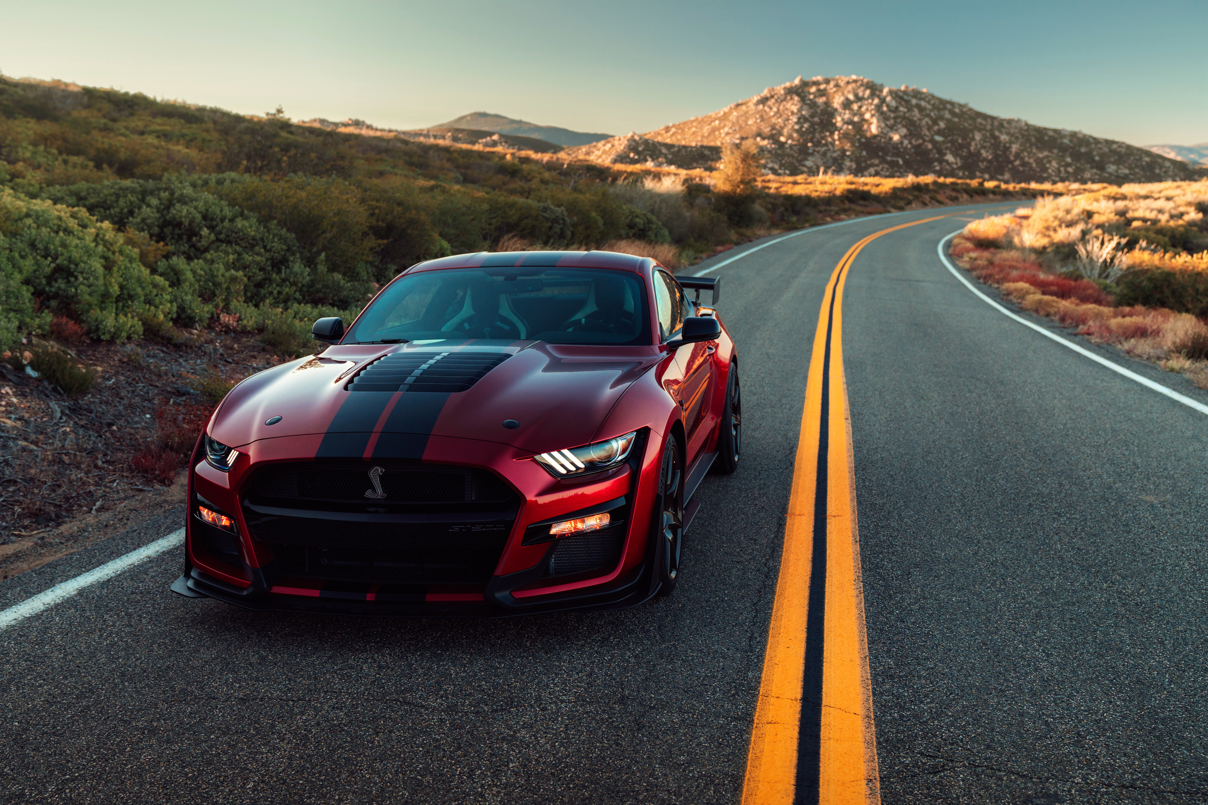 2020 Ford Mustang Shelby Gt500 4k Hd Cars 4k Wallpapers Images