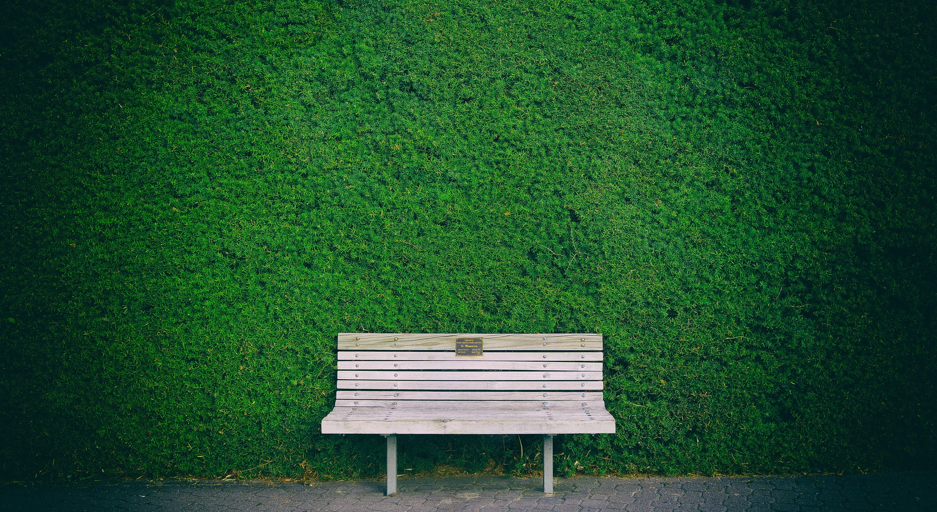 Beautiful Bench In Garden HD Nature 4k Wallpapers