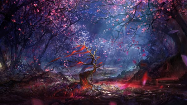 Beautiful Forest Art HD Artist 4k Wallpapers Images