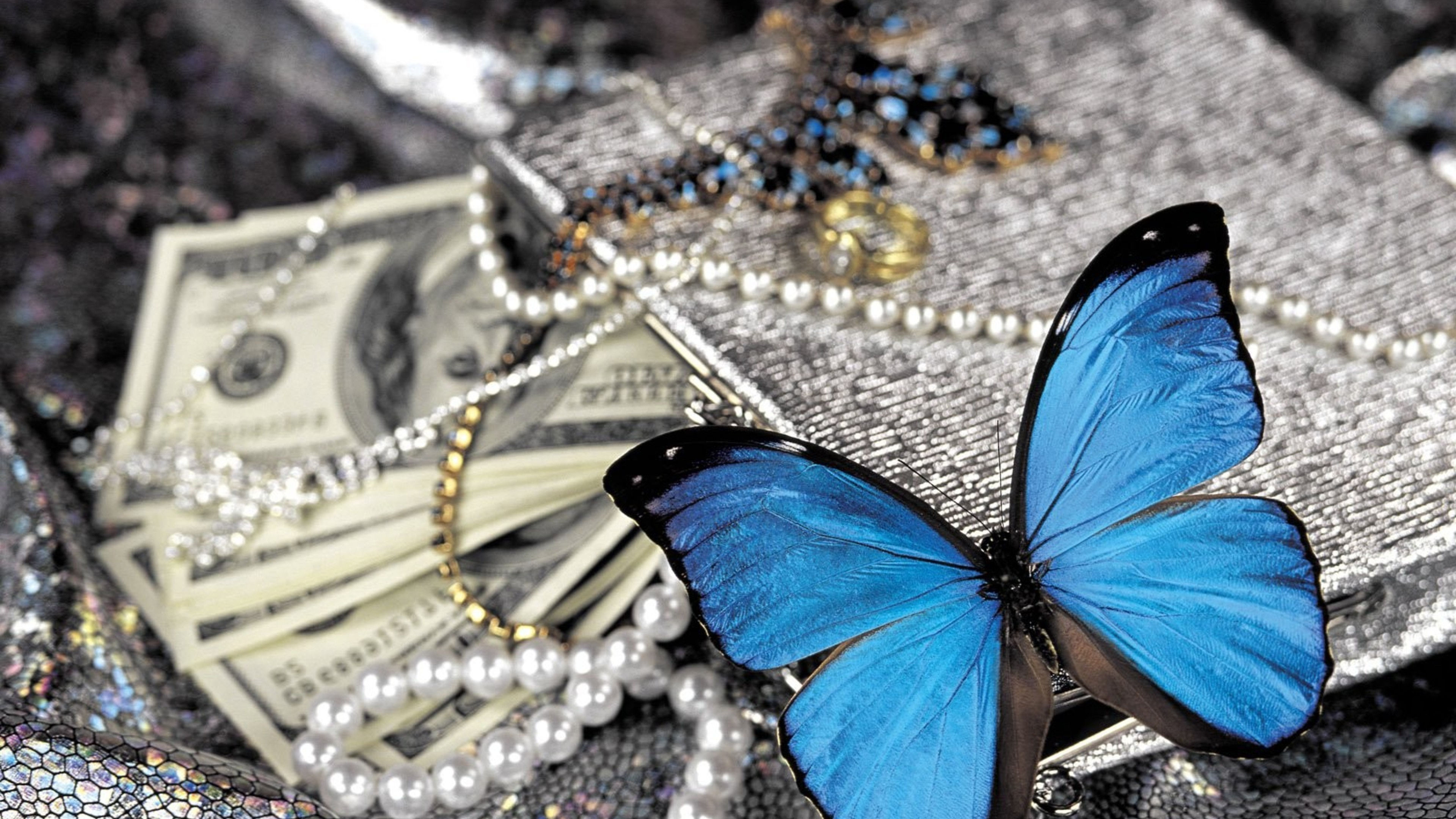 2048x1152 Wallpaper Cute Blue Butterfly On Pearls Hd Birds 4k Wallpapers Images