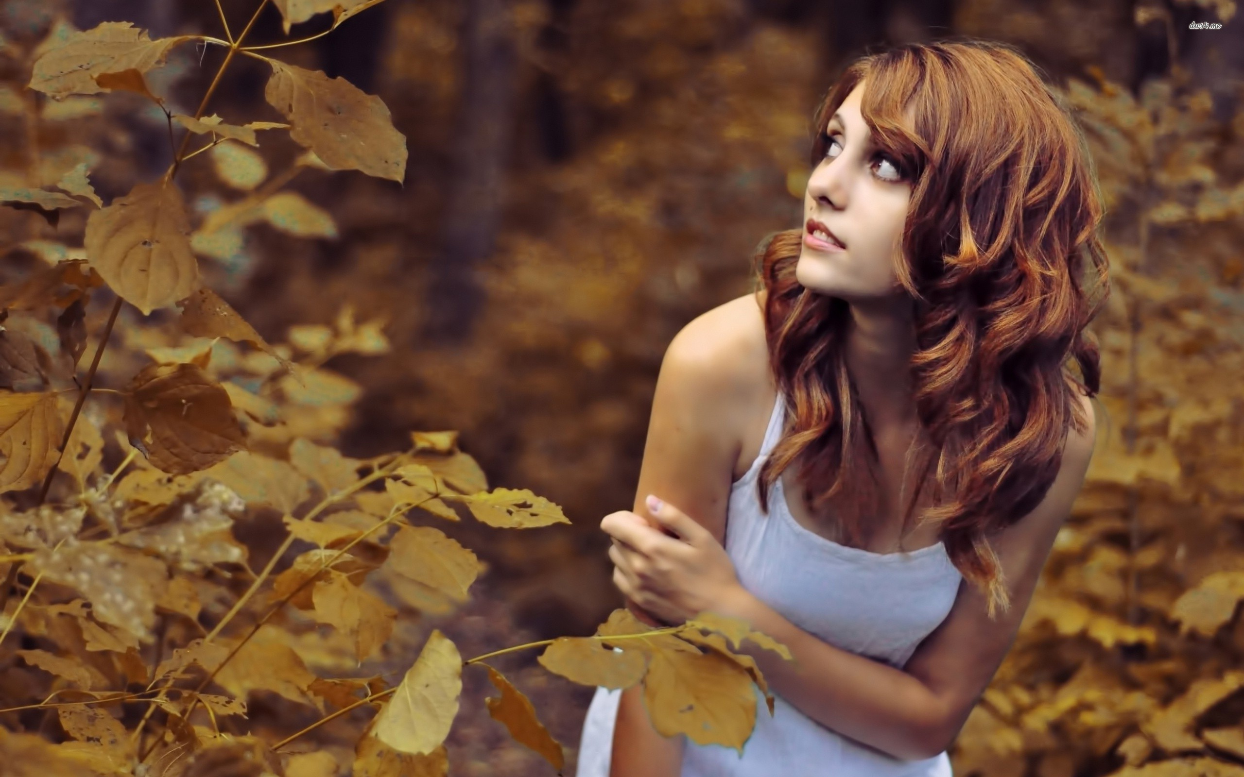 Fall Bird Feeder Wallpaper Brunette Tank Top Hd Girls 4k Wallpapers Images