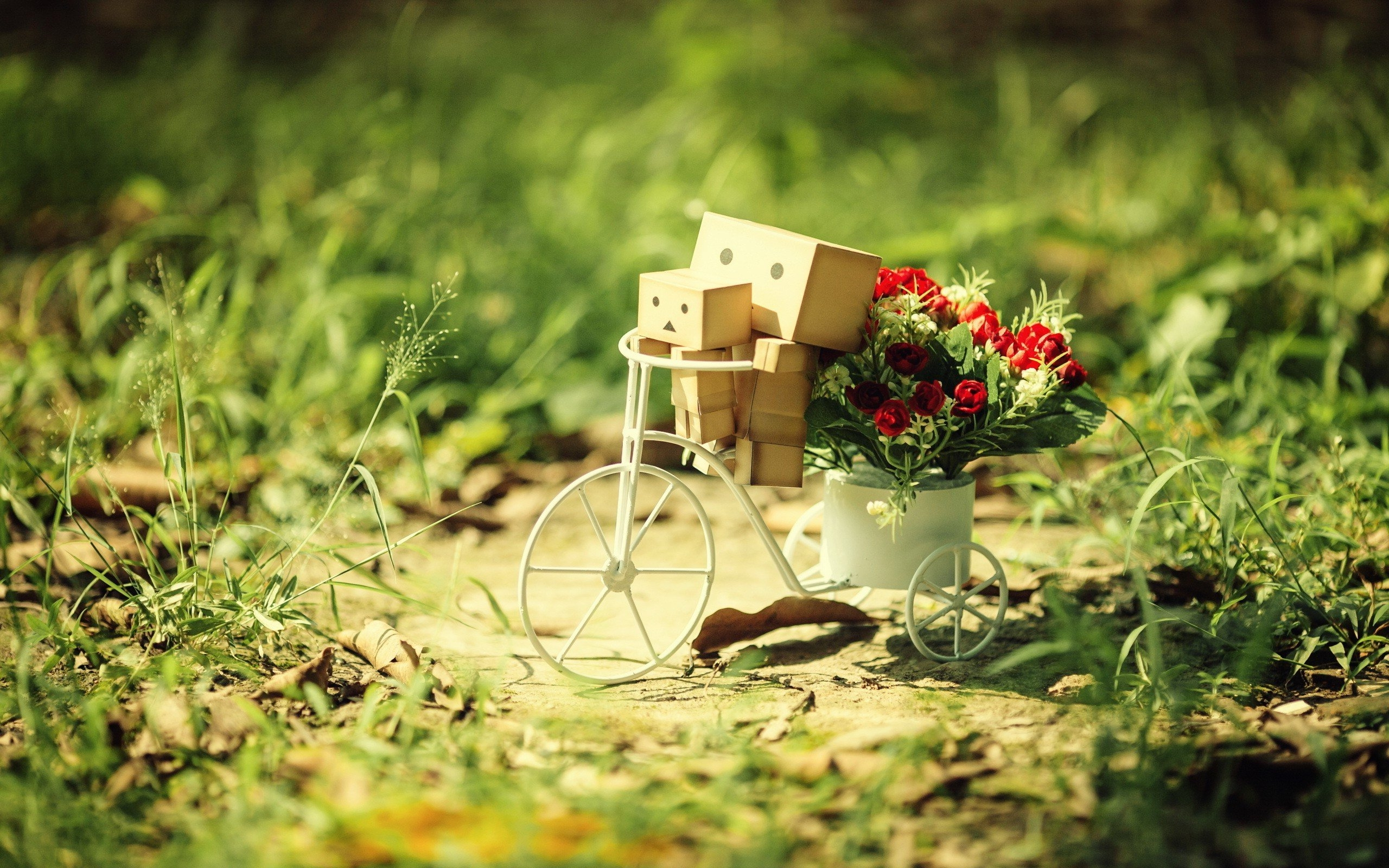 Cute Flower Wallpapers For Mobile Danbo Best Pic Hd Cute 4k Wallpapers Images