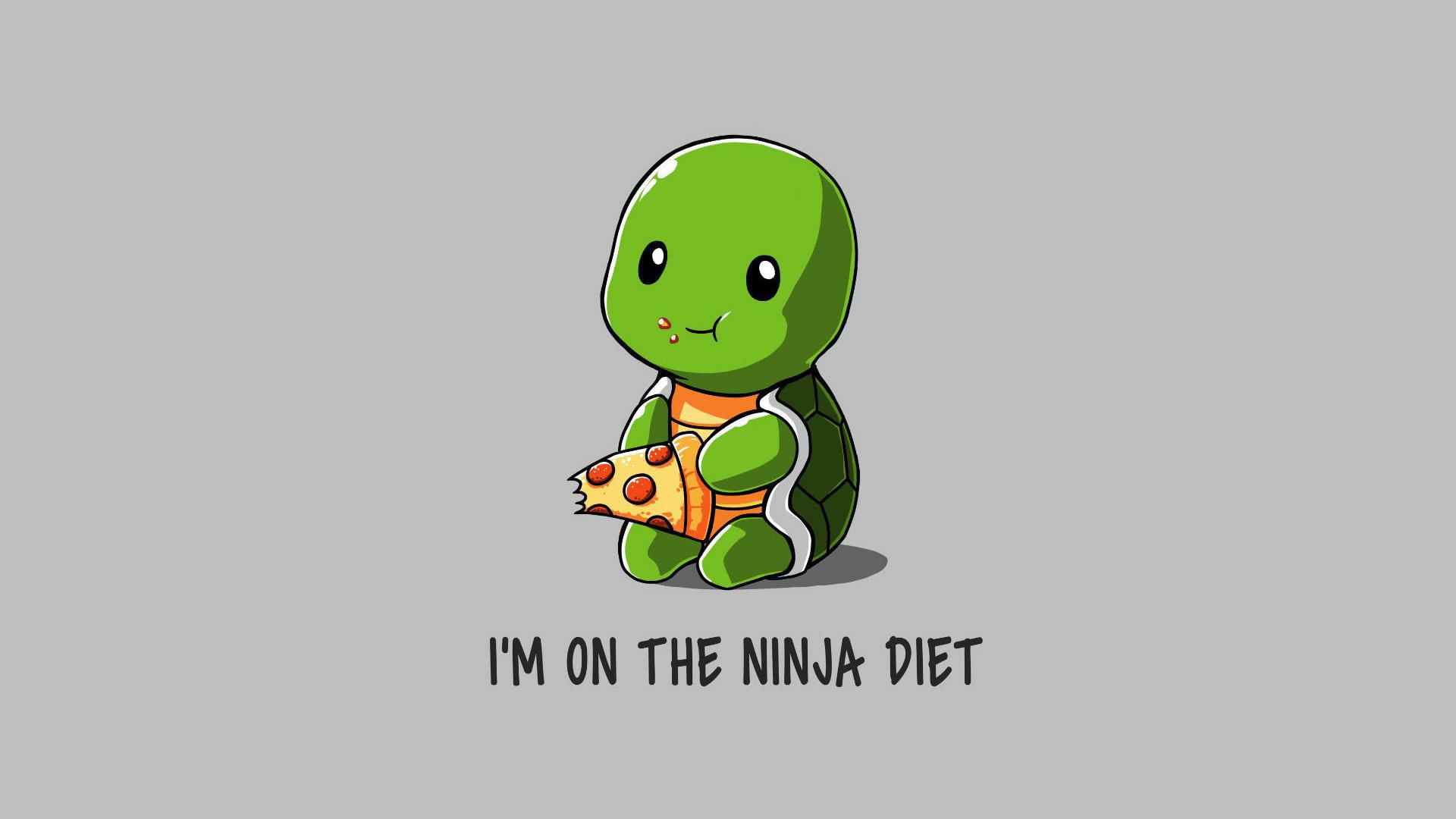 funny ninja on diet