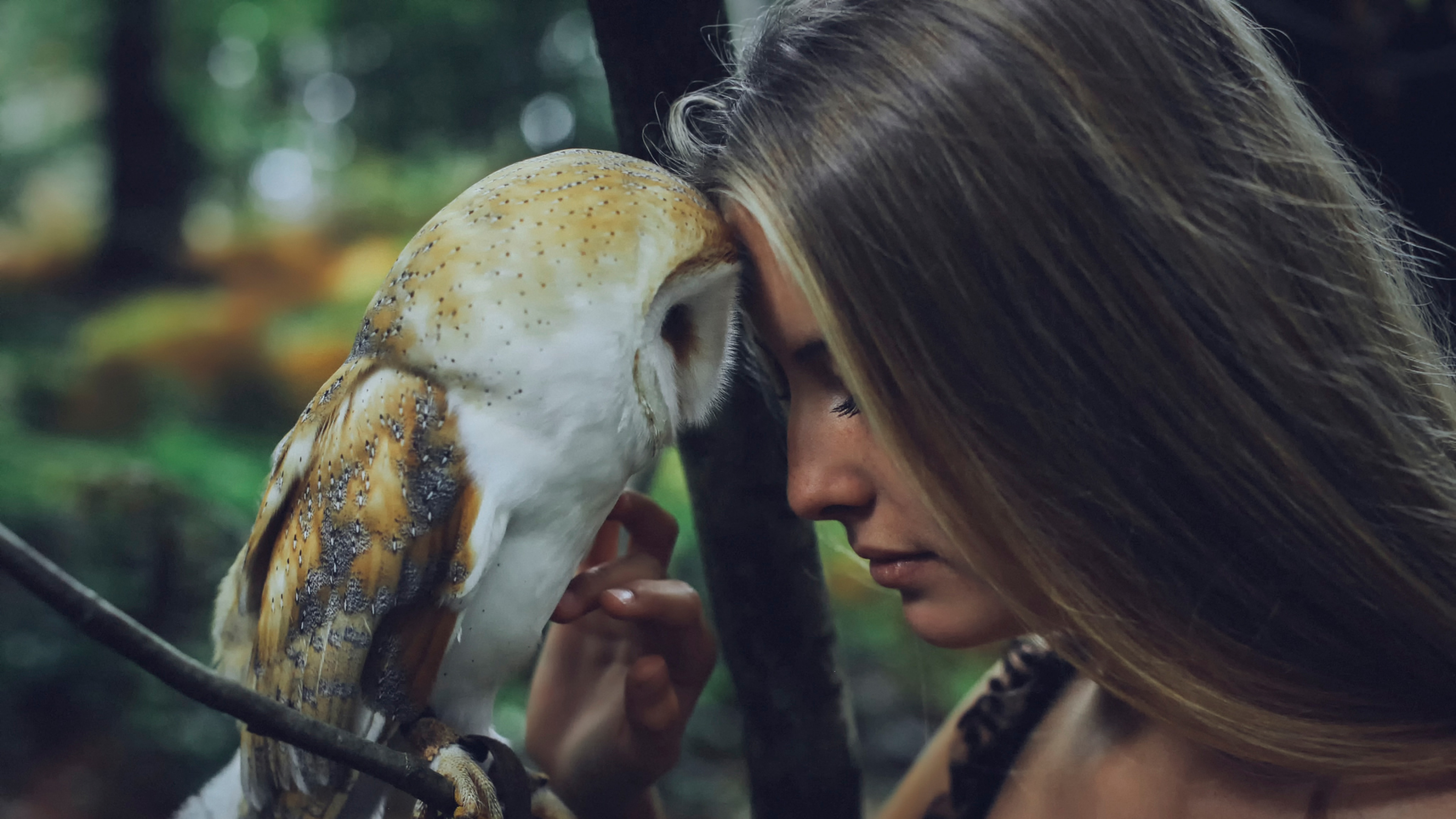 Cute Bird Desktop Wallpaper Girl With Owl Hd Photography 4k Wallpapers Images
