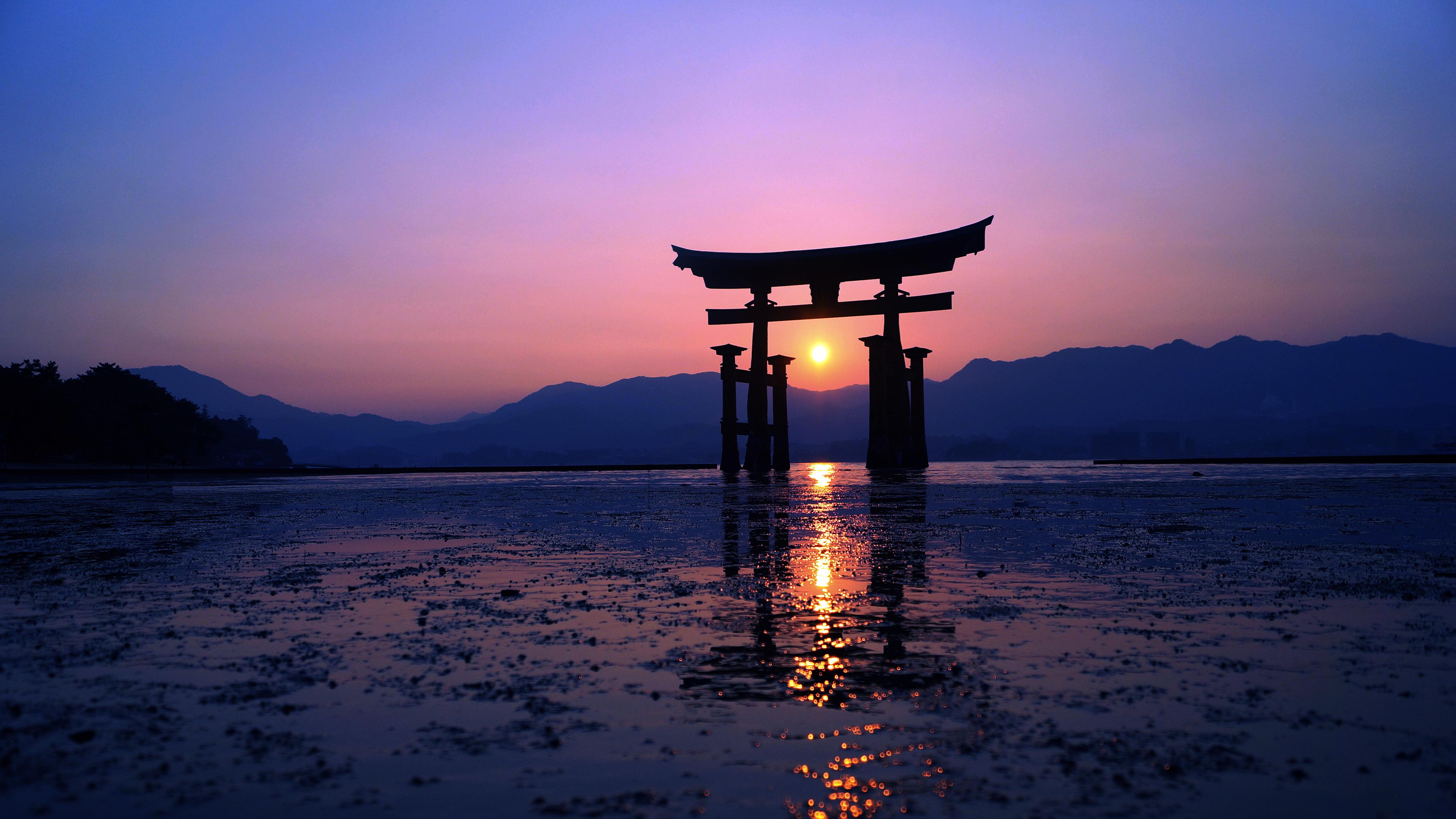 We have got 25 pic about neon dark purple aesthetic. Japan Sunset Purple Evening 4k, HD Artist, 4k Wallpapers ...