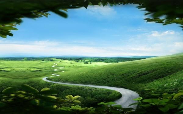 Beautiful Path Landscape