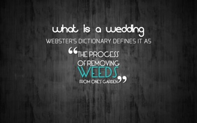 funny quote wallpapers quotes hd text wedding