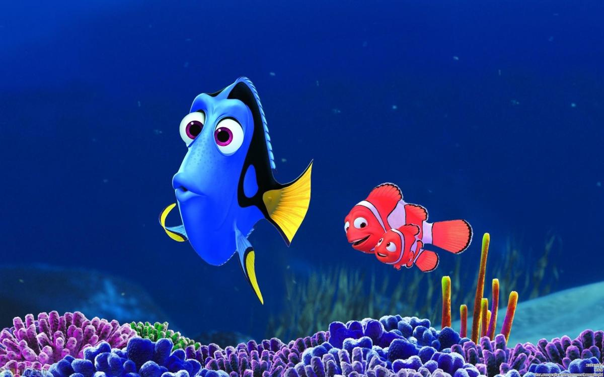 Finding Nemo 3d Dory Background Wallpapers Hd And 4k Wallpaper