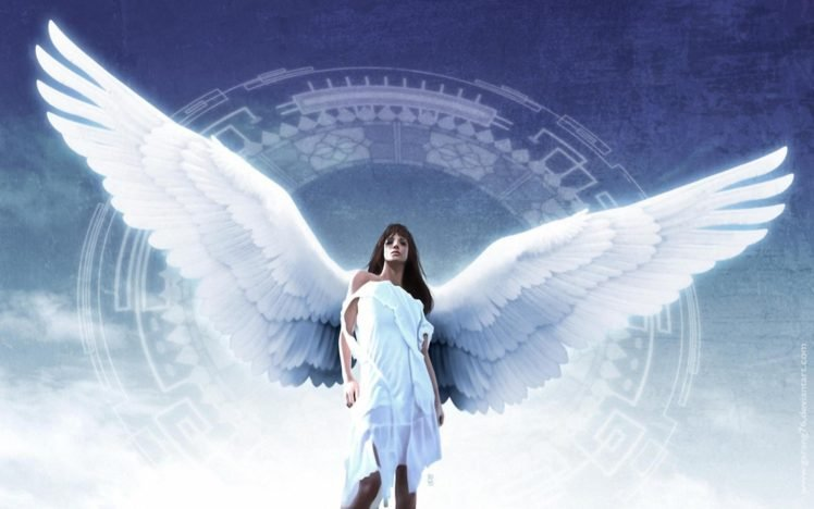 angel wings hd wallpapers