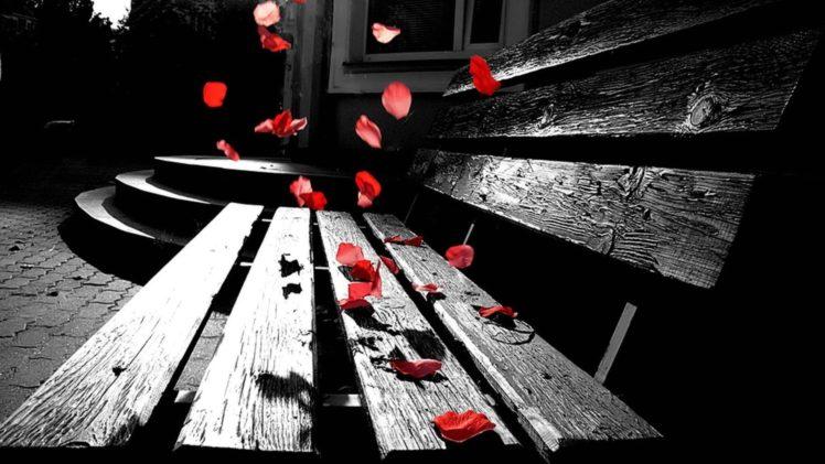 Petals Sad Hd Wallpapers Desktop And Mobile Images Photos