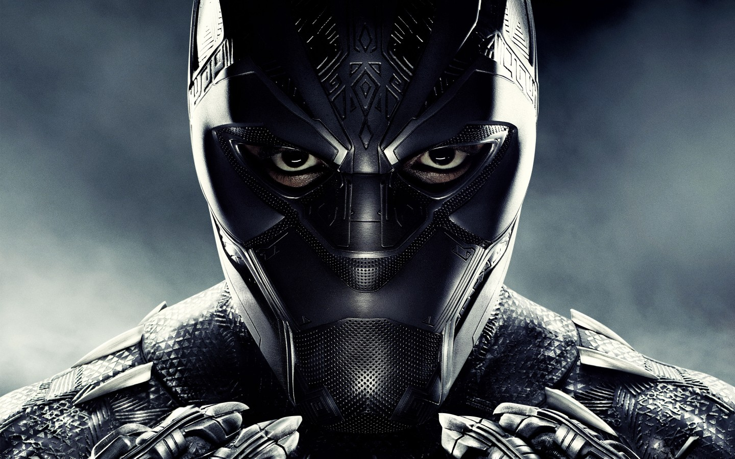 Black Panther 5k Wallpapers  Hd Wallpapers  Id #22823