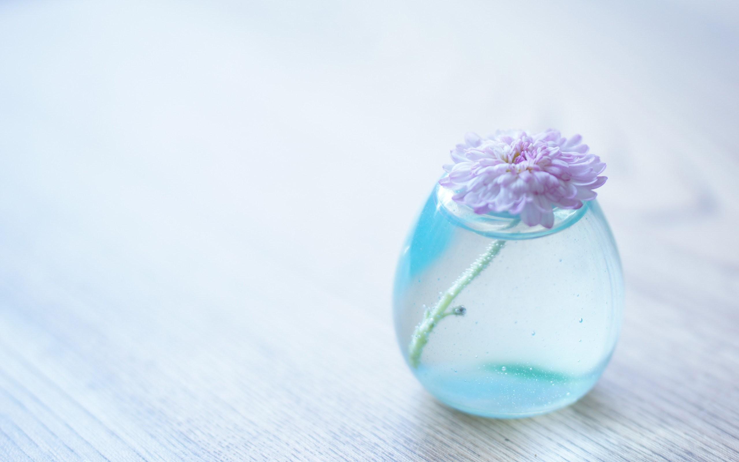 free water flower wallpaper