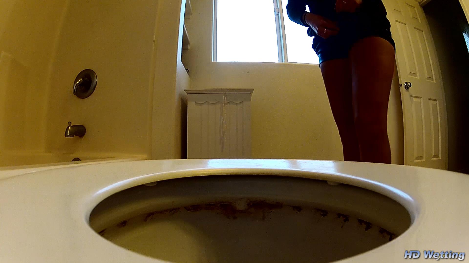 Public Toilet Voyeur Collection  HD Wetting