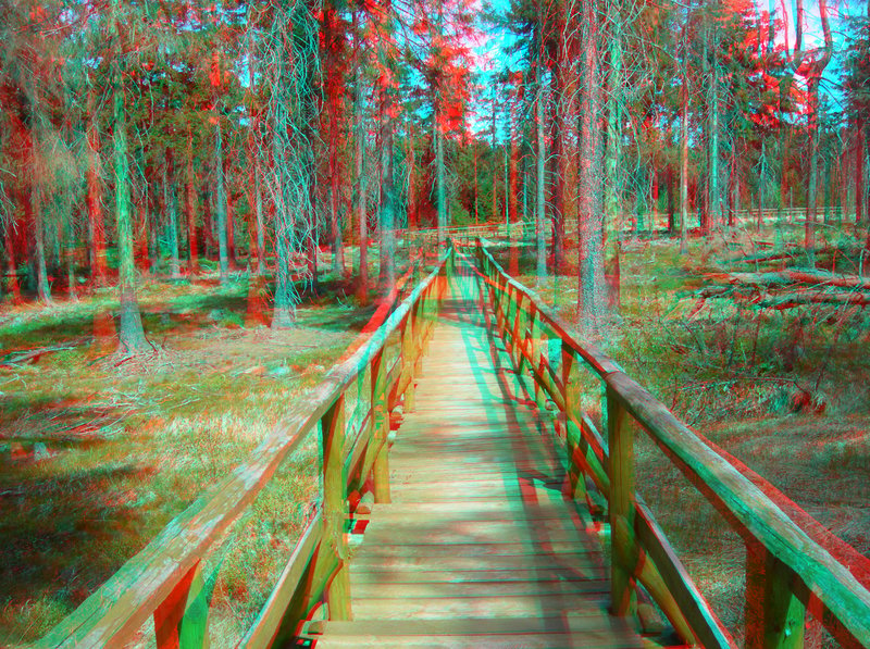 3d photo download picture