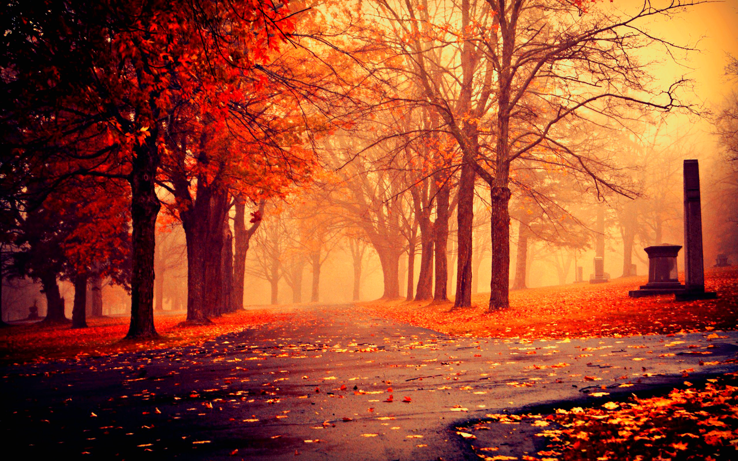 Spooky Fall Wallpaper Hd Autumn Image 9775 Hdwpro