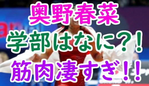 奥野春菜(レスリング)出身高校や大学の学部は?吉田沙保里の後継者は筋肉も凄すぎ!