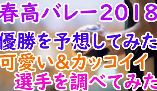 【春高バレー2018】注目選手や優勝予想!出場高校や可愛い女子にイケメン男子も調査