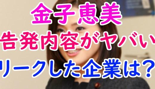 金子恵美(めぐみ)が菊田真紀子を告発したフェイスブックがヤバい!泥仕合をリークした企業はどこ?