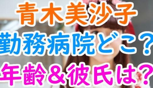 青木美沙子(ロリータモデル)現役看護師の病院はどこ?年齢やスッピンもかわいいけど彼氏は?