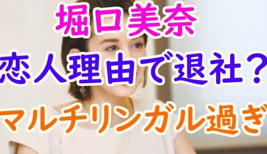 堀口美奈(ミイナ)が三菱商事を退社した理由は彼氏?早稲田大学卒でマルチリンガルが凄すぎ!