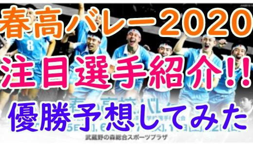 【春高バレー2020】優勝予想と男女の注目選手10人をピックアップ!