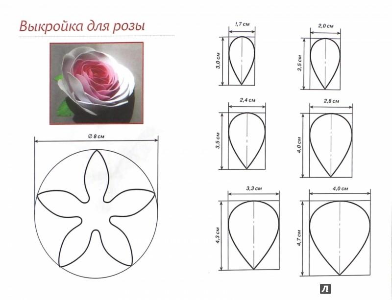 актеры момент шаблон для розы из вафельной бумаги яркие принты, сочные
