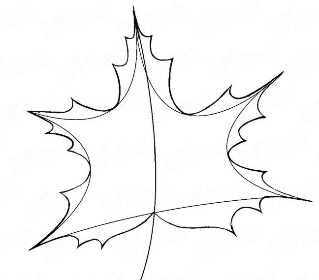 кленовые листья рисунки карандашом поможет детям