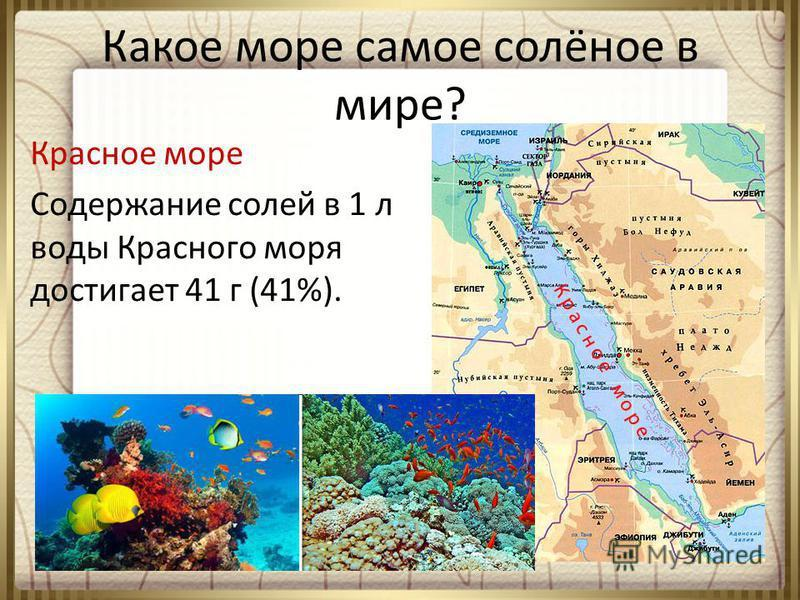 紅海の塩分と地図上のその場所をスライドさせる